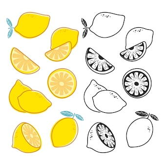 レモンカット、黄色と黒と白の柑橘系の果物のベクトルを設定