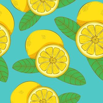레몬 과일 손으로 그려진된 벡터 일러스트 레이 션 완벽 한 패턴