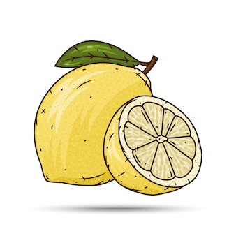 Lemon fruit and slices.