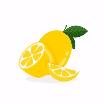 레몬 과일 잎 흰색 배경에 고립