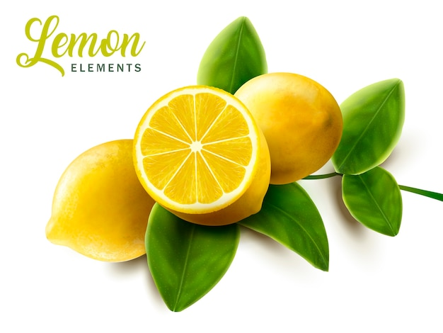 Lemon and green leaves elements illustration