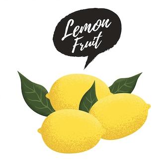Lemon and green leaves vector illustration