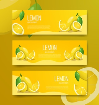 템플릿 배너 레몬 건강 과일