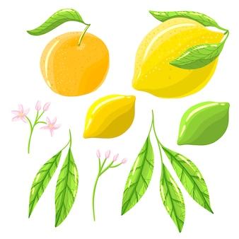 Lemon items