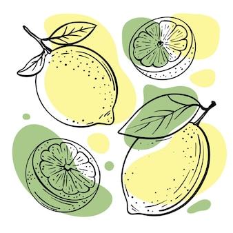 スケッチスタイルで手描きの店やレストランのメニューのレモンライムおいしい柑橘系の果物