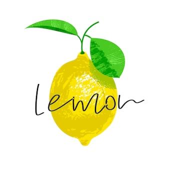 Лимон на веточке с листиком. векторная иллюстрация с надписью. на белом фоне. иллюстрация с уникальной рисованной текстурой.