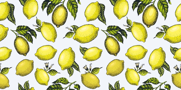 Lemon seamless pattern.