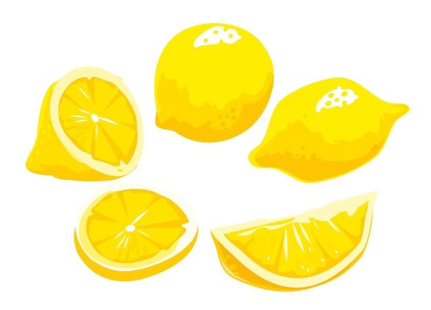 レモンスライスと全体。黄色の背景に分離。ベクトルカラーフラットイラスト。