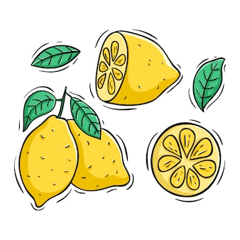 Lemon slice with colored doodle style on white