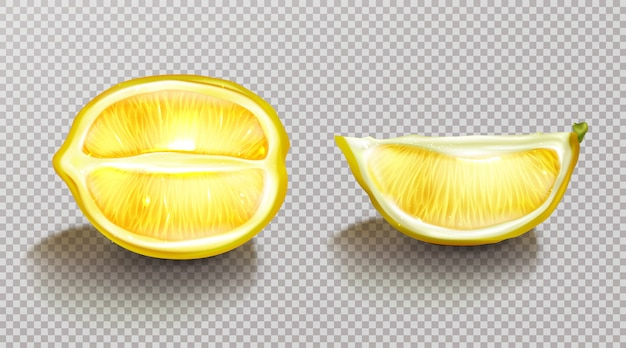 Lemon, sliced citrus with shadow realistic