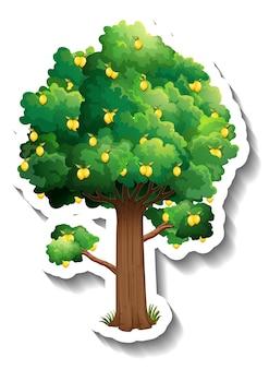 Lemon tree sticker on white background