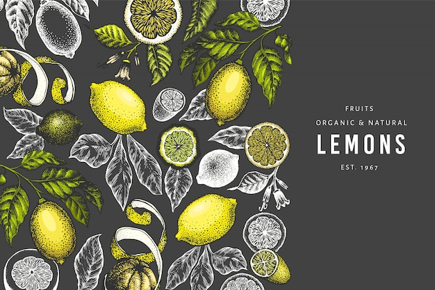 Lemon tree template.