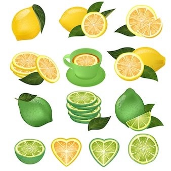 Lemon vector green lime and lemony sliced yellow citrus fruit and fresh juicy lemonade illustration natural