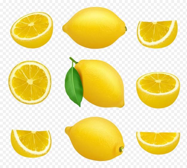 레몬 컬렉션. 감귤 노란색 주스 자연 식품 건강 천연 제품 벡터 그림의 현실적인 그림