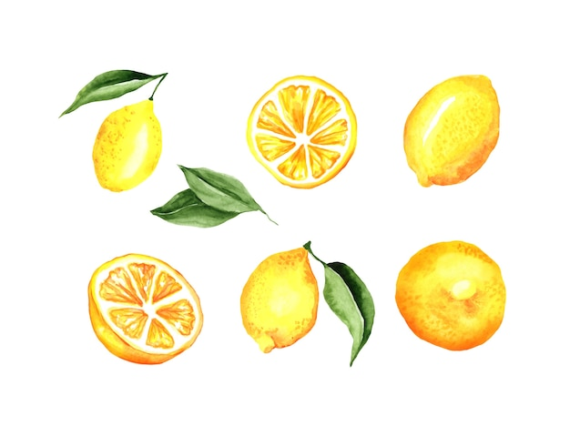 Lemons watercolor set