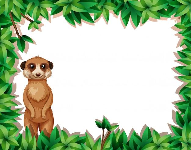 A lemur in nature frame
