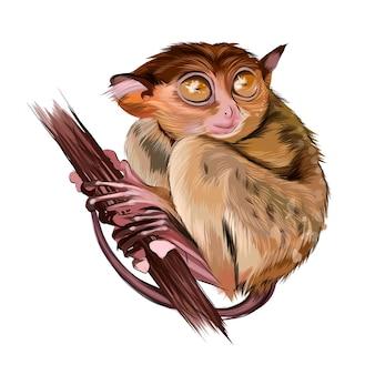 여러 가지 빛깔의 페인트에서 나뭇가지에 앉아 있는 여우원숭이 안경원숭이