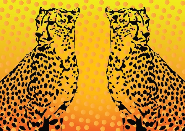 Leopard vector graphics