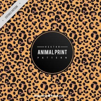 Leopard фон кожи