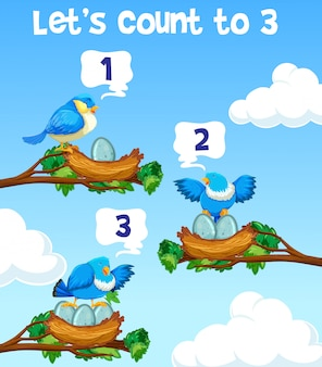 Lets count to three bird concept