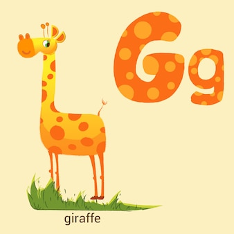 Letter g with cute giraffe