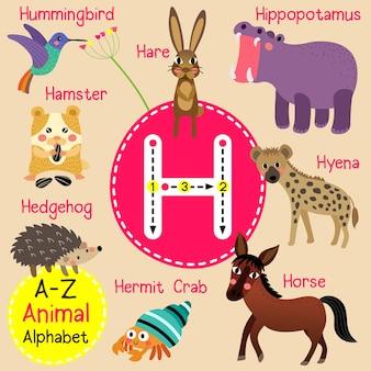 手紙h動物園のアルファベット