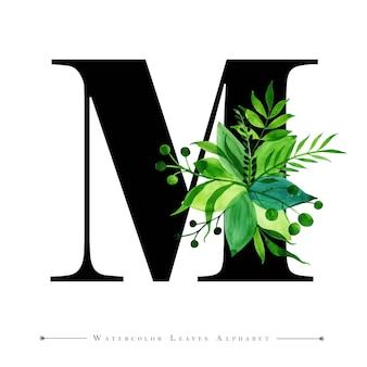 수채화 잎 배경으로 편지 m