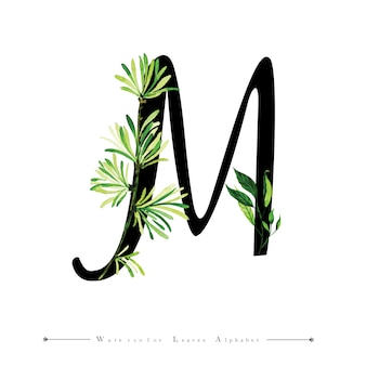 Letter m with watercolor leaves background