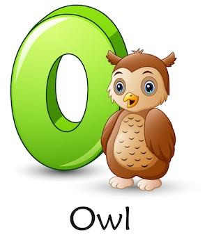 Letter o is for owl cartoon alphabet