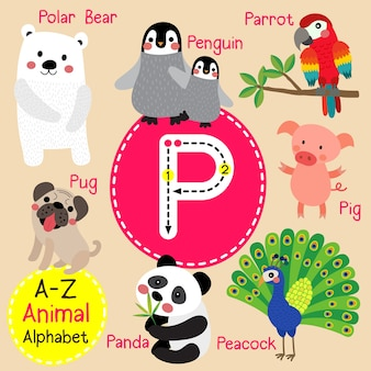 Letter p zoo alphabet