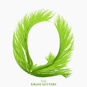 ジューシーな草のアルファベットの文字q。成長する草からなる緑のqシンボル。有機植物のリアルなアルファベット。春とエコロジー植字イラスト。