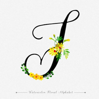 편지 t 수채화 꽃 배경