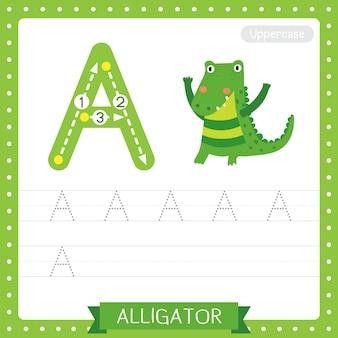 Letter a uppercase tracing practice worksheet. alligator