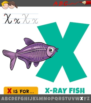 Letter x from alphabet with cartoon x-ray fish