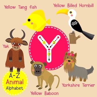 Letter y zoo alphabet