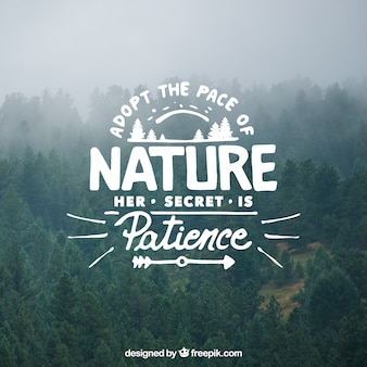 Lettering and quote design on tree background