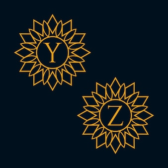 Letters y and z design vector
