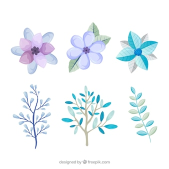 Light blue and lilac winter flowers