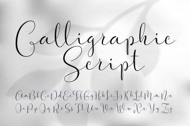 Легкий набор шрифтов каллиграфического сценария