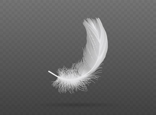 Легкие падающие белые птичьи перья на прозрачном фоне