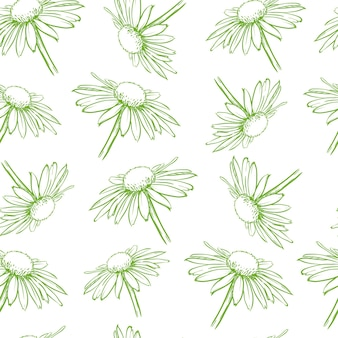 薄緑の花のシームレスなパターン白いヒナギク手描きのベクトル図