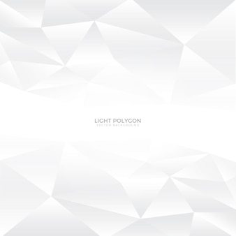 Light Grey Polygon Clean Abstract Vector Background