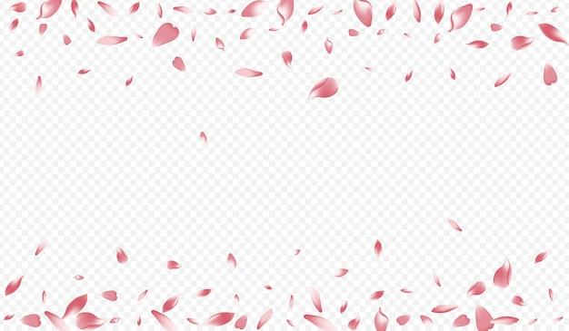 가벼운 복숭아 벡터 투명 배경입니다. 피는 로맨틱 카드. 로터스 떨어지는 포스터. 꽃 아름다움 배경입니다. 화이트 애플 재팬 축하합니다.