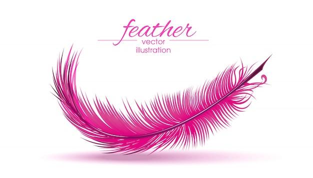 Светло-розовое перо на белом фоне.