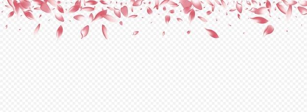ライトローズベクトルパノラマ透明背景。花の風のテクスチャ。ハートのグラフィックイラスト。ロータスジャパンおめでとうございます。明るい咲く孤立したバナー。