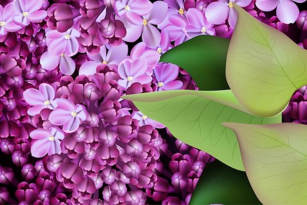 Сиреневый цветок весной цветочные фон