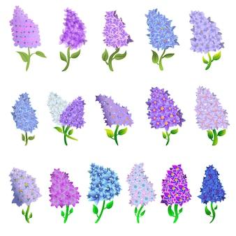 Lilac set, cartoon style