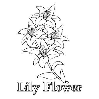 手描きのユリの花