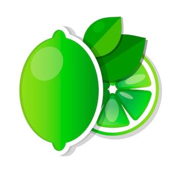 Лаймовый зеленый с кусочками и листьями векторные иллюстрации
