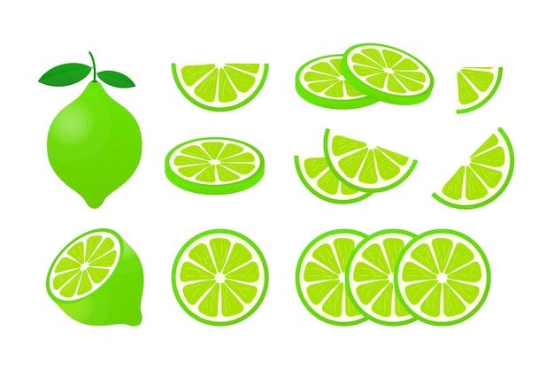 Лайм с зелеными листьями, ломтик цитрусовых на белом фоне. иллюстрация.